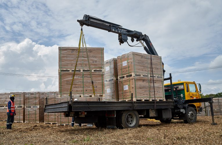 CEO construye granja solar en Santander de Quilichao